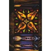 Why Not Do God? by W.S. Arnott