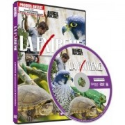 Discovery - La extreme-Arizona/Madagascar/Scotia (DVD)