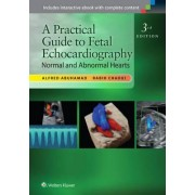 A Practical Guide to Fetal Echocardiography by Alfred Z. Abuhamad