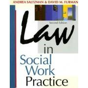 Law in Social Work Practice by Andrea Saltzman