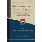 Studies of Plant Life in Canada by Mrs Catherine Parr Traill