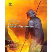 Metallurgical Process Technology: Ferrous, Non-Ferrous, Refractory-, Reactive- and Aquaeous Processing by Seshadri Seetharaman