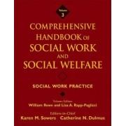 Comprehensive Handbook of Social Work and Social Welfare: Social Work Practice v. 3 by Karen Sowers