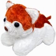 NoVowels Soft Puppy Brown White Color 29Cm