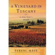 A Vineyard in Tuscany by Ferenc Mate