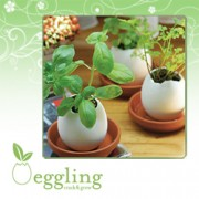 Egglings Crack & Grow Kit
