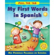 Pull the Tab: My First Words in Spanish by Sally Delaney
