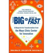 Think Big, Start Small, Move Fast: A Blueprint for Transformation from the Mayo Clinic Center for Innovation by Nicholas LaRusso