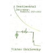 A Sentimental Journey by Viktor Shklovsky