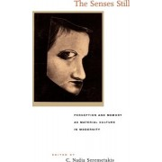 The Senses Still by C. Nadia Seremetakis