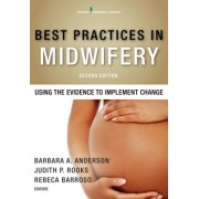 Best Practices in Midwifery, Second Edition: Using the Evidence to Implement Change
