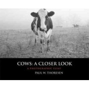 Cows: A Closer Look by Paul W. Thoresen