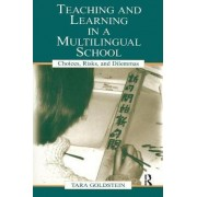 Teaching and Learning in a Multilingual School by Tara Goldstein
