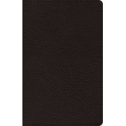 ESV Omega Thinline Reference Bible by Crossway Bibles
