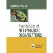 Foundations of Net-enhanced Organizations by Detmar W. Straub