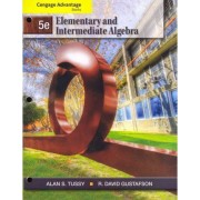 Cengage Advantage Books: Elementary and Intermediate Algebra, Loose-Leaf Version by Alan S Tussy