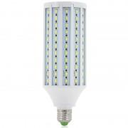 Eclairage LED Ampoule LED blanc 30W 4000 lumens Culot à vis E27
