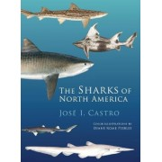 The Sharks of North America by Jose I. Castro