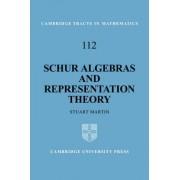 Schur Algebras and Representation Theory by Stuart Martin
