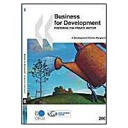 Business For Development: Fostering The Private Sector: Development Centre Perspectives Series