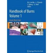 Handbook of Burns: Acute Burn Care v. 1 by Marc G. Jeschke