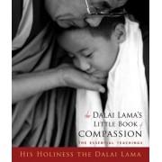 Dalai Lama's Little Book of Compassion by Thupten Jinpa