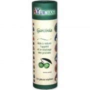 Garcinia grand format - 120 gelules