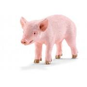 Schleich - 13783 - Figurine Animal - Cochonnet Debout
