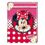 Minnie Mouse vriendenboekjes