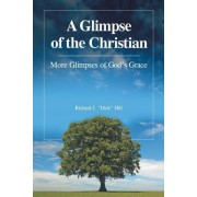A Glimpse of the Christian: More Glimpses of God's Grace