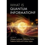 What is Quantum Information? by Olimpia Lombardi