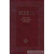 Sztenderd Biblia (puha)
