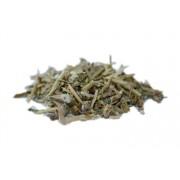 Profikoření - KOTVIČNÍK zemní - bylinný čaj (100g)