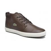 Lacoste Sneakers Ampthill Terra 316 1