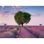 PUZZLE VALENSOLE FRANTA 500 PIESE