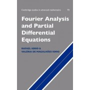 Fourier Analysis and Partial Differential Equations by Jr. Rafael Jose Iorio