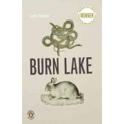 Burn Lake by Carrie Fountain