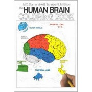 The Human Brain Coloring Book by Marion C. Diamond