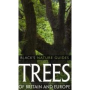Trees of Britain and Europe by Margot Spohn