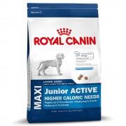 15kg Maxi Junior Active Royal Canin Size Hrană uscată câini