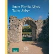 Strata Florida Abbey, Talley Abbey by David M. Robinson