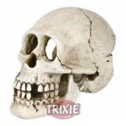 Lidská lebka 15 cm