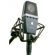 SE Electronics 4400a Condenser Microphone