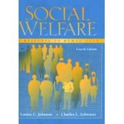 Social Welfare by Louise C. Johnson