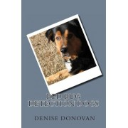 Bed Bug Detection Dogs by Denise Donovan