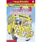Magic School Bus Amazing Magne by Rebecca Carmi
