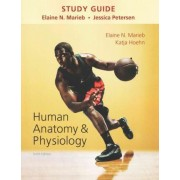Study Guide for Human Anatomy & Physiology by Elaine N. Marieb