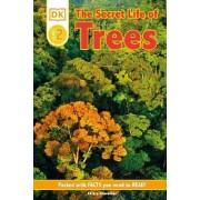DK Readers L2: The Secret Life of Trees by Barbara Shook Chevallier Hazen