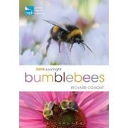 RSPB Spotlight Bumblebees by Richard Comont