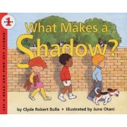 What Makes a Shadow by Rd Find out